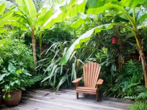 tropical landscaping styles