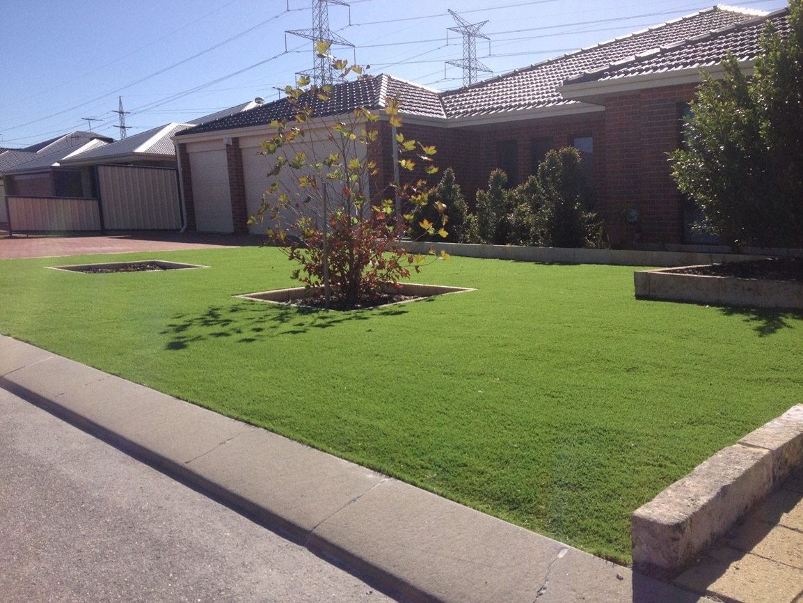 artificial lawn perth artificial grass suppliers perth